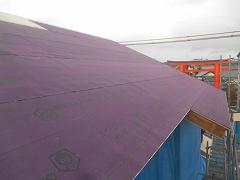 DSCN5011